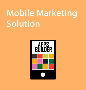 Mobile Marketing Solution2